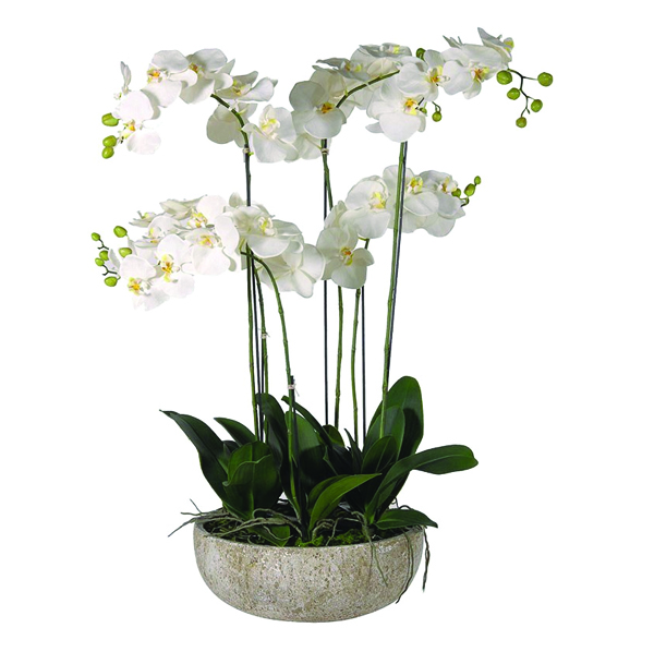 Large Silk Orchids in Stone Pot